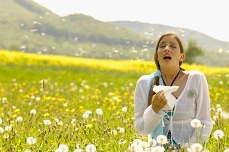 Allergia ai pollini:  i consigli del ministero  della Salute